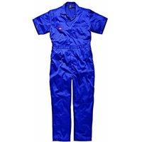 Dickies Mens Lightweight Cotton Short Sleeve Overalls Royal Blue 2XL