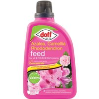Doff Azalea, Camellia and Rhododendron Feed 1l