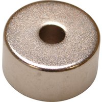 E Magnet Neodymium Disc Magnet 19mm