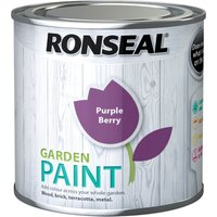 Ronseal General Purpose Garden Paint Purple Berry 250ml
