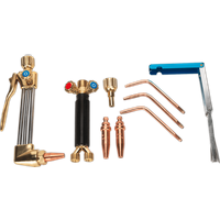 Sealey Oxyacetylene Welding and Cutting Torch Kit