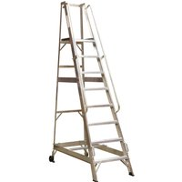 Sealey Warehouse Step Ladder 11