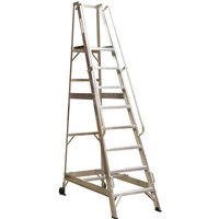 Sealey Warehouse Step Ladder 14