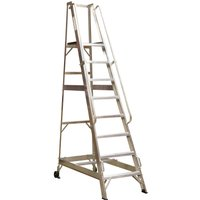 Sealey Warehouse Step Ladder 8