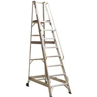 Sealey Warehouse Step Ladder 9