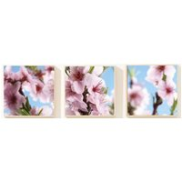 Graham & Brown Art Cherry Blossom, 43306