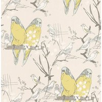 Belynda Sharples Wallpapers Budgie, AOW-BUDGIE 01