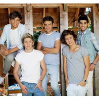 One Direction Murals One Direction Mural Barn, 1D-BARN-001