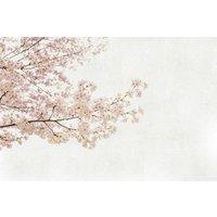 Paper Moon Murals Almond Tree, 4500032