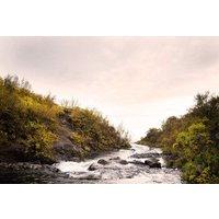 Paper Moon Murals Continue en Route River, 4500164