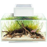 Fluval Edge Aquarium 23 Litre Gloss White