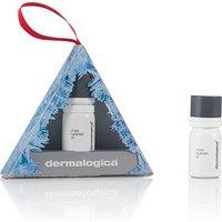 Dermalogica Phyto Replenish Oil Ornament - Ornament Gifts