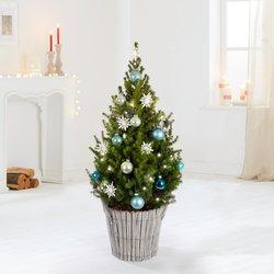Weihnachtsbaum Weihnachtsbaum Winter Magic ca. 80 Zentimeter