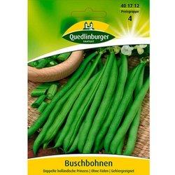 Buschbohnen Doppelte holländische (1 Portion Samen)