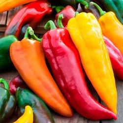 Gemüsesamen-Sortiment Corno di Toro-Paprika