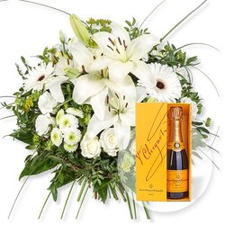 Allegra und Champagner Veuve Clicquot
