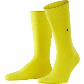 Burlington Lord Herren Socken, 40-46, Gelb, Uni, Baumwolle, 21021-114102
