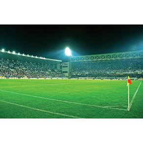 Consalnet Fototapete Sport Fussballfeld Vlies in verschiedenen Grössen
