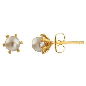 Heideman Paar Ohrhänger Flos S gold mit Perle in weiss oder farbig