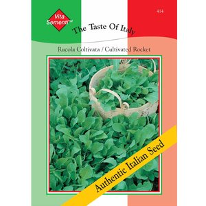 Cultivated Rocket - Vita Sementi Italian Seeds