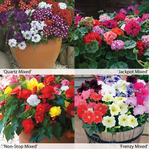Garden Ready Container Collection