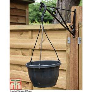 Hanging Basket with Hanger