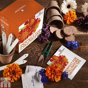 Pollinators Flower Growing kit