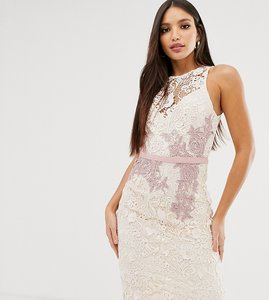 Read more about Little mistress tall contrast lace floral applique pencil dress in cream