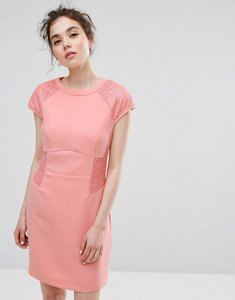 Read more about Oasis lace panelled shift dress - blush