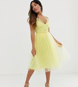 85d01568e Read more about Asos design petite premium lace top tulle cami midi dress