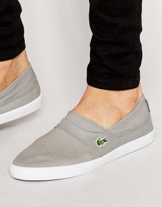 Read more about Lacoste marice slip on plimsolls - grey