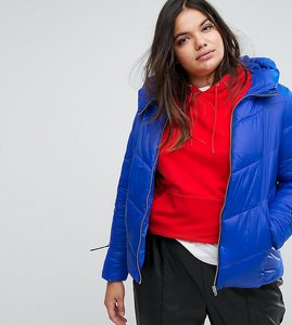 Read more about Simply be padded jacket - cobalt