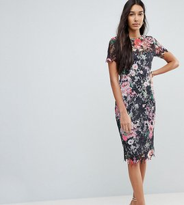 Read more about Paper dolls tall all over floral printed lace pencil dress - multi