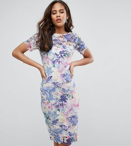 Read more about Paper dolls tall printed lace pencil dress - multi