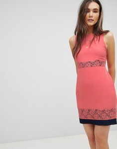 Read more about Qed london skater dress with lace inserts - coral with navy