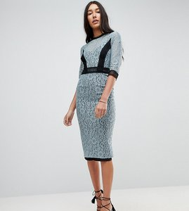 Read more about Little mistress tall lace midi pencil dress with contrast panel - cornflower