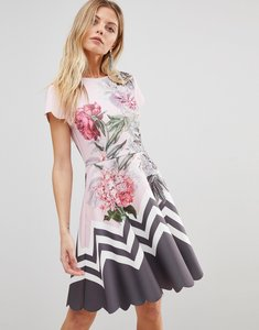 Read more about Ted baker haiilie skater dress in palace gardens - dusky pink