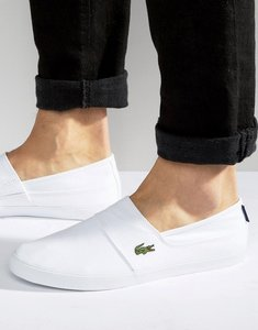 Read more about Lacoste marice slip on plimsolls - white
