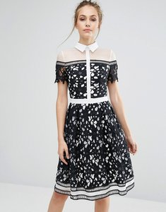 Read more about Chi chi london premium lace panelled dress with contrast collar - black white