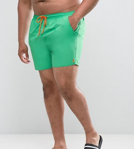 Read more about French connection plus swim shorts - green