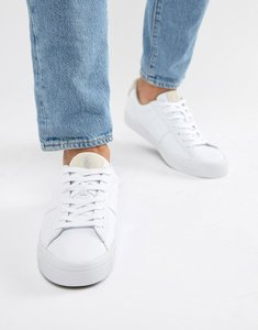 Read more about Polo ralph lauren sayer canvas trainers contrast logo in white