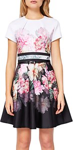 Read more about Ted baker valerey painted posie skater dress baby pink