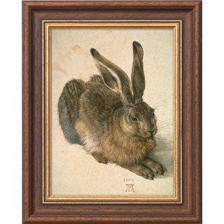 Albrecht Dürer: Bild 'Junger Feldhase' (1502), gerahmt