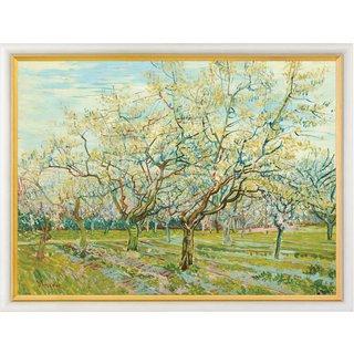 Vincent van Gogh: Bild 'Der weiße Obstgarten', gerahmt