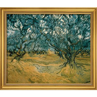 Vincent van Gogh: Bild 'Olivenbäume' (1889), gerahmt