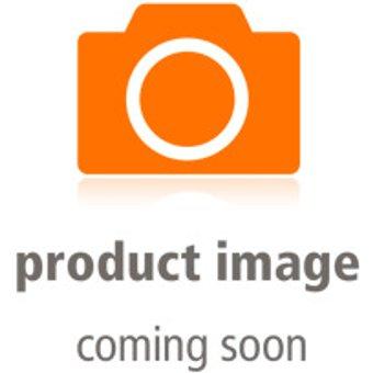 HM24 Gaming-PC HM246596 i5-10400F 16GB RAM 256GB SSD 1TB HDD RX 550 Win10 Pro