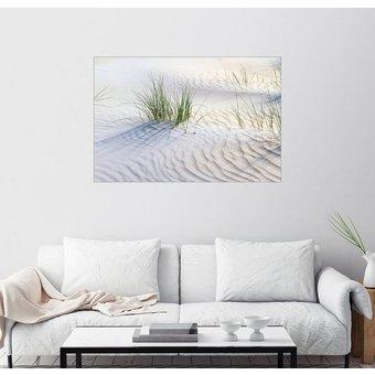 Posterlounge Wandbild Jürgen Klust Dünengräser im Sand
