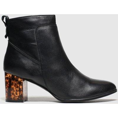 Schuh Black Roar Boots