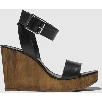 Schuh Black Oslo Sandals