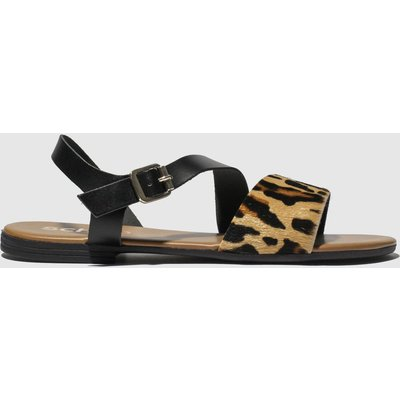 Schuh Black & Brown Venice Sandals